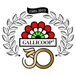 Gallicoop Pulykafeldolgozó Zrt.